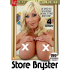 Store Bryster